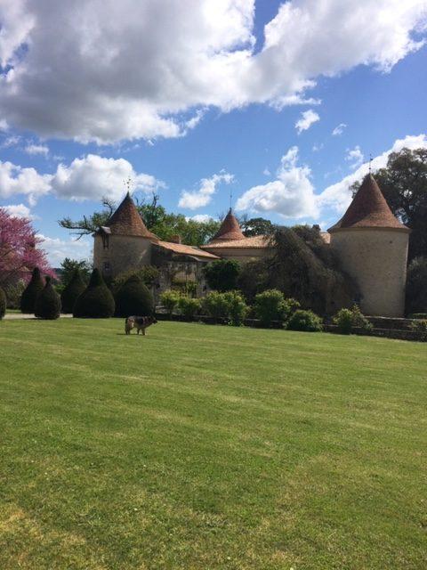 Chateau Couronneau 7 | biowijn.shop