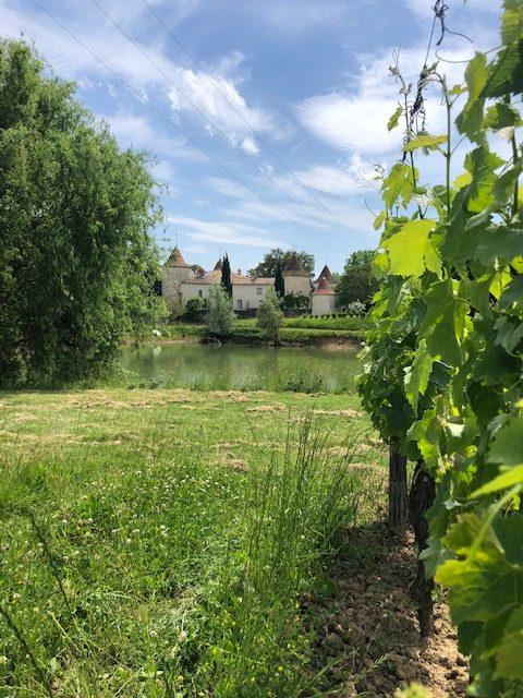 Chateau Couronneau 9 | biowijn.shop