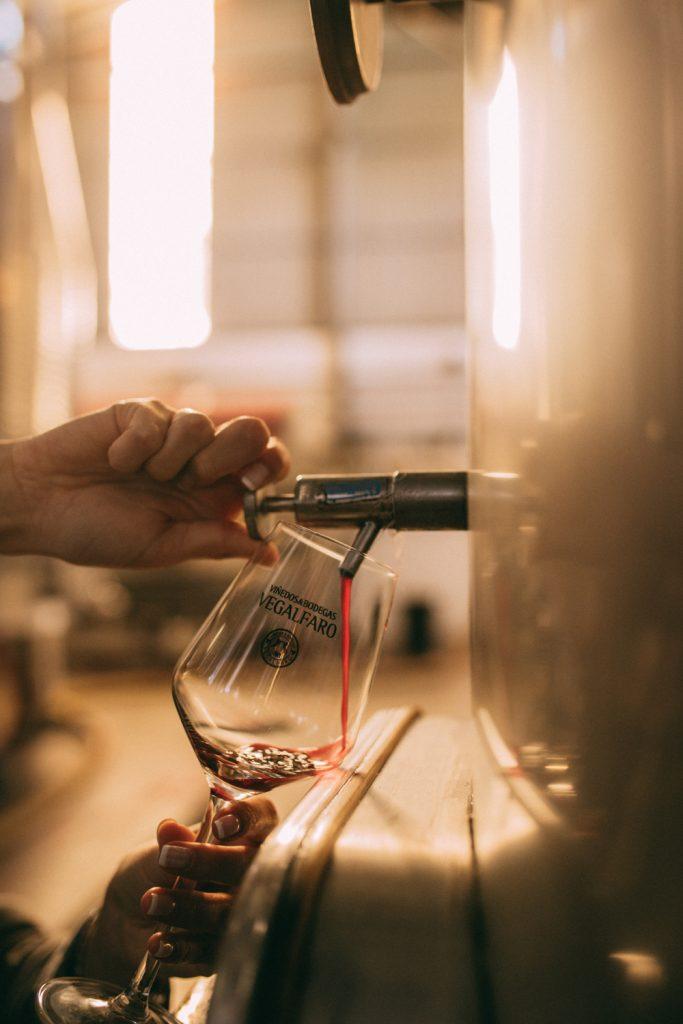 Viñedos & Bodegas Vegalfaro, tasting new vintage| biowijn.shop